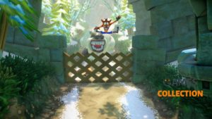 Crash Bandicoot Трилогия (NSW)