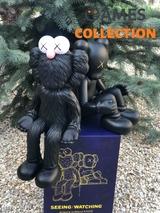 BRAND NEW Kaws KAWSONE BFF Seeing _ Watching Limited Edition Black-thumb